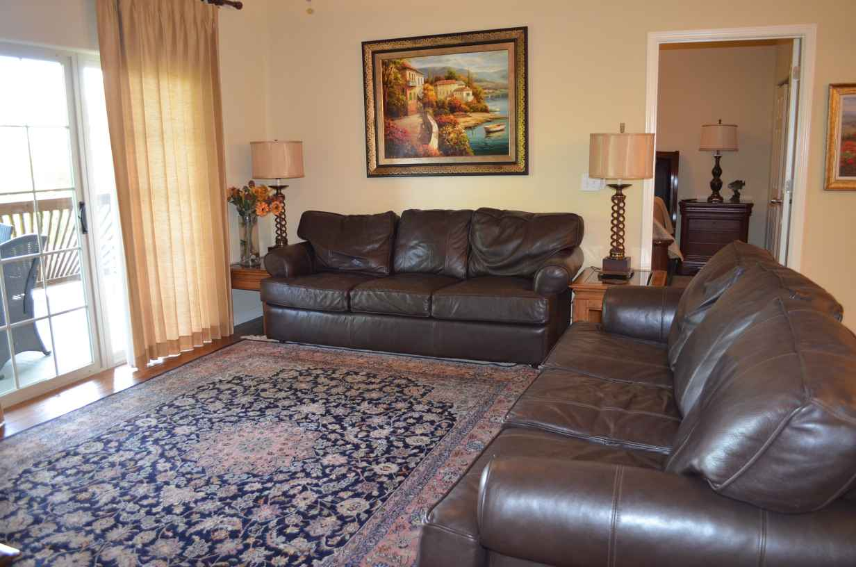 leather-couches-in-living-room-with-hideabed