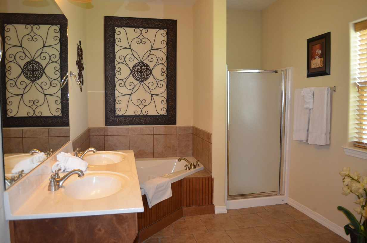 Master Bathroom Jacuzzi Tub And Standup Shower